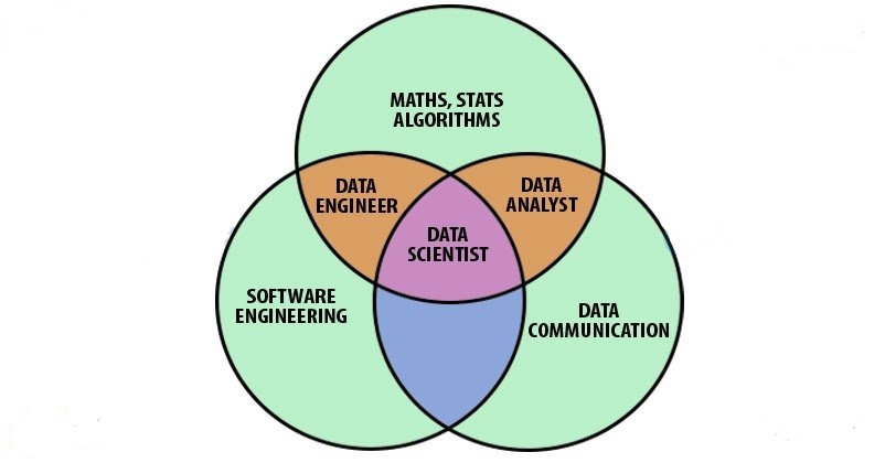 roles and responsibilities of data analyst